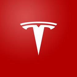 Don't Forget Tesla Motors
